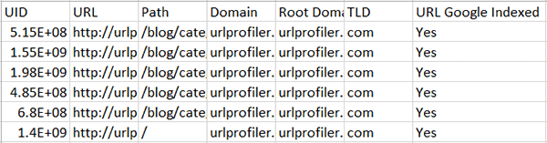 Google Index Check URL Profiler Output