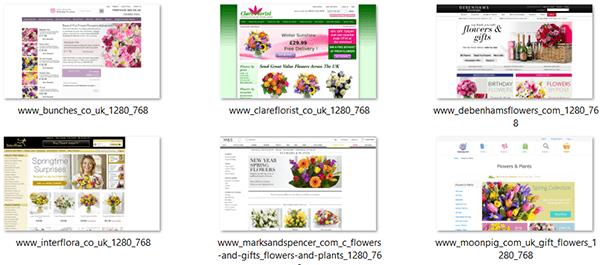 Flowers Visual